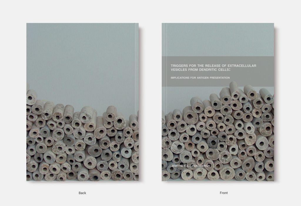 Proefschrift omslag voorbeeld ontworpen door Anna Bleeker